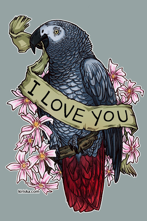 An African grey parrot and phlox flowers, with reference to Alex the parrot