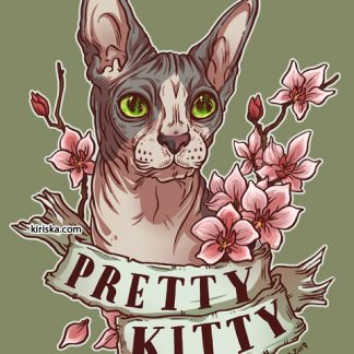 A pretty kitty sphynx cat