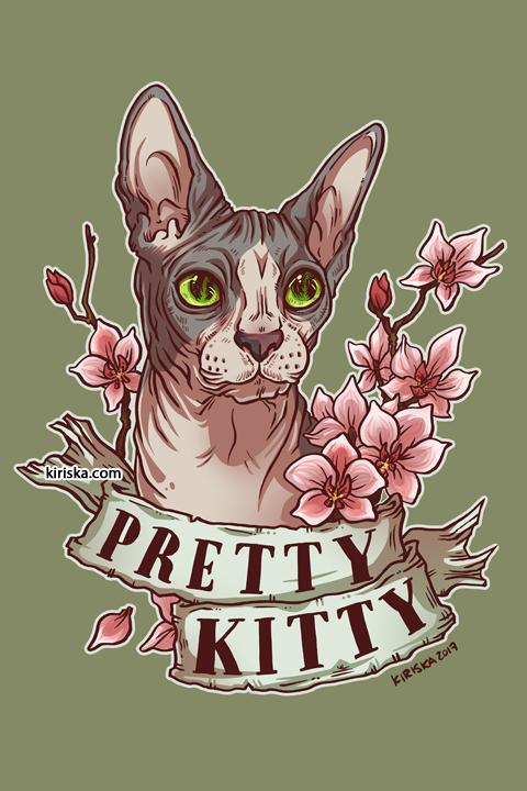 A pretty kitty sphynx cat