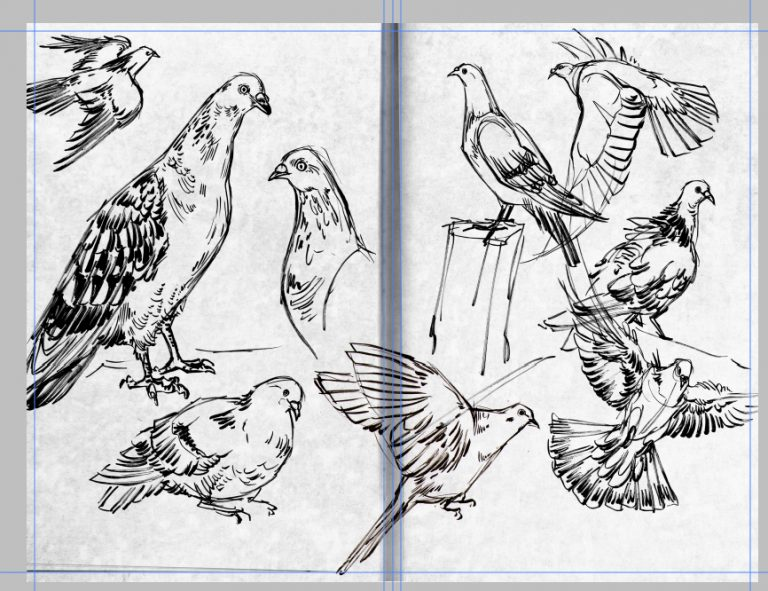 Compilation of ink sketches and drawings by Kiriska, 2014-2015