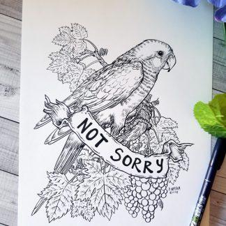 Quaker parrot and grapes