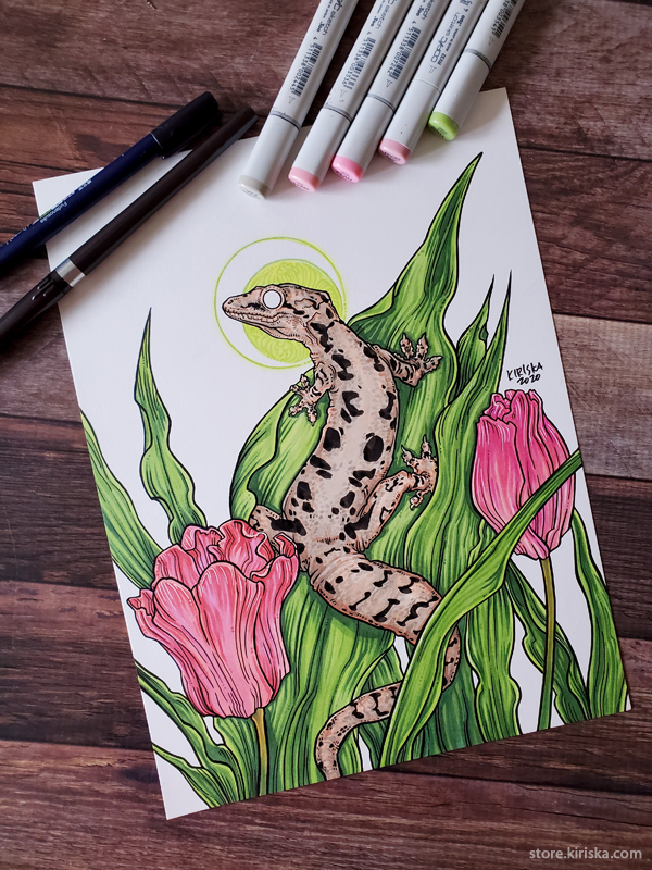 Drawing of a mourning gecko, colored with Copic markers
