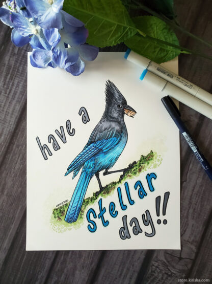 Stellar Day for a Steller's Jay