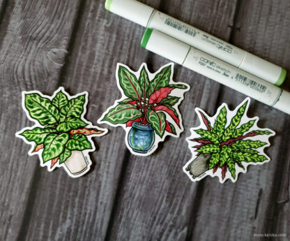 Calathea stickers
