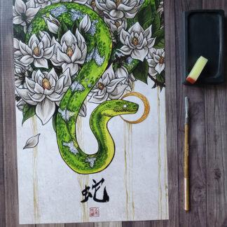 A snake among magnolias